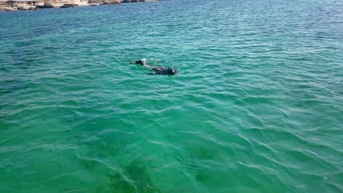 Snorkel en la Isla de Rua y en la Isla de Sálvora