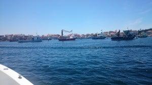 articulo artes de pesca (2)